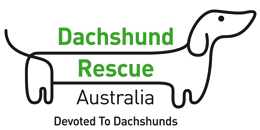 Rescuing & rehoming dachshunds across Australia